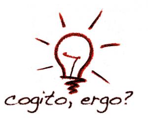 cogito ergo GmbH & Co. KG